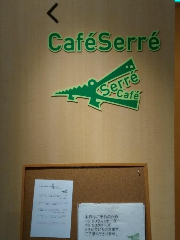 銀座カフェ・セレ
