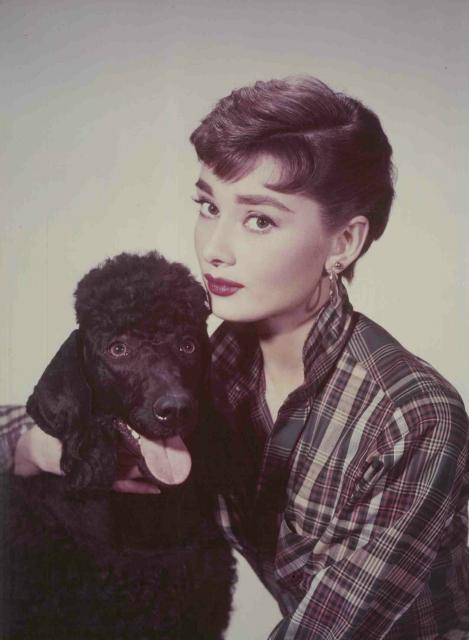 小さな写真展Audrey Hepburn 銀座