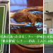 「東京銀座 シチューの店 エルベ elbe」冬のちょっとした贅沢に♪ 身も心もあったまる絶品シチューのお店